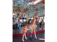 Giraffe at the carousel.