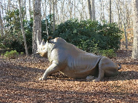 Rhino sculpture.