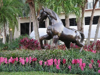 Horse sculpture and flowers.