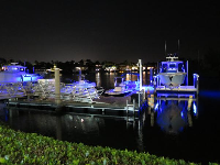 Boats lit up in blue!