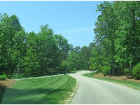 The long, peaceful driveway in to Briar Chapel.