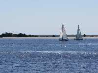 Sailboats on the Cape Fear River.