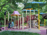 Moving monkey bars. The playground is surrounded by beautiful greenery.