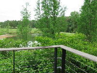 View over the pond.
