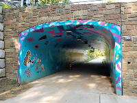 The colorful tunnel on the Bolin Creek Trail, which starts at Umstead Park.