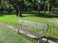 Park bench with insect cutouts.