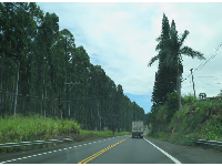 On Highway 19, just outside Waimea town.