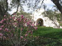 Flowers along the walkway to the California missions courtyard.