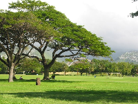 The nicely-shaped curve of Waikiki Shell, an outdoor performance venue, can be seen from Kapiolani Park.