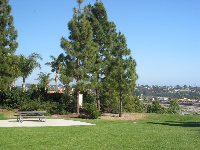 A lovely picnic area- this is a very typical Pismo look.