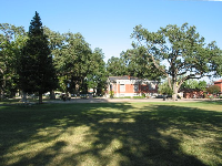 City Park lawn and Carnegie Library in the distance.