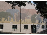 Gorgeous elephants mural.