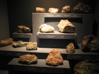Rocks in an exhibit before you push the button...