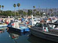 Fishing boats at the harbor.