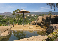 The elephant exhibit has a huge African umbrella.