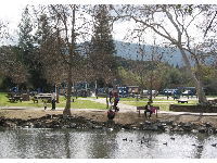 Parents and kids enjoying the creek beside the playground at Vasona Lake Park.