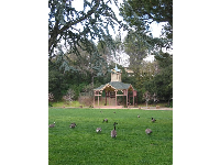 Pavilion and huge lawn with geese at Oak Meadow Park.