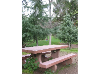 Picnic table on a hill amongst trees at Oak Meadow Park.