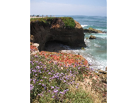 Flowers hang from the cliffs, and the water is a perfect shade of blue.