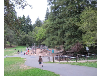 The playground sits among lush forest.