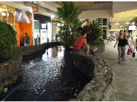 Koi pond on the second level.