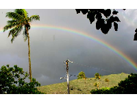 It rains a little every day in Manoa, the valley of the rainbows. When I lived there, I really saw a rainbow every day.