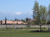 Snow-topped San Gabriel mountains in the background. Shady spot on the sloped edge of the soccer field.