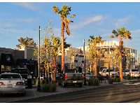 """The Boulevard,"" the downtown redevelopment- a real success!"