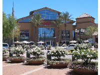 Flowerpots and palms outside Valencia Town Center Mall.