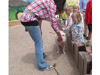 Kids can touch the pig!