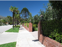Junipero Plaza, a quiet street that leads to the mission rose garden.