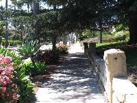 Shady path along Garden Street.