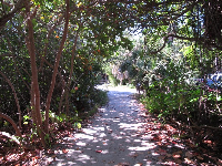 Tropical trail from the parking lot.