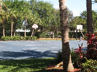 Basketball courts and plenty of palms.