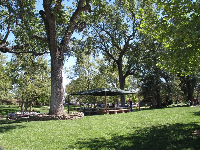 A covered picnic area for a large gathering.