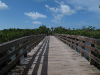 Wooden walkway over the estuary to the beach.