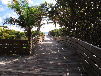 Wooden walkway to the beautiful sea!