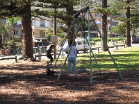 The delightful playground under pine trees by the sea. Old-fashioned wooden swings!