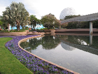 Flowers, pool, and the Spaceship Earth geosphere in the distance.