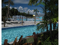 The lazy river goes through tropical vegetation with the forest in the background.