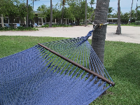 Blue hammock at Islander Resort.
