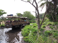 The safari ride through water.