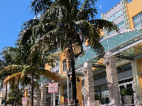 Collins Ave, near 15th Street- Shoppes of Il Villaggio.