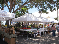 Strolling along at the Green Market, Sundays 9-1.