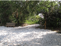 The white white sand at the beginning of the trail down to the beach.