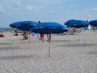 Blue umbrellas in the sand.
