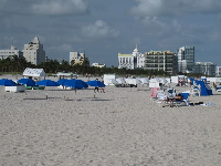 Blue umbrellas, white umbrellas, and Miami skyline.