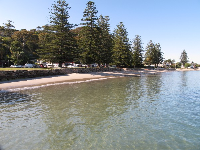 View as you leave Palm Beach wharf, looking back at Snapperman Beach.