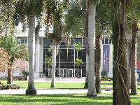Palms and modern building.