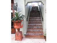 Ceramic tiled stairs.